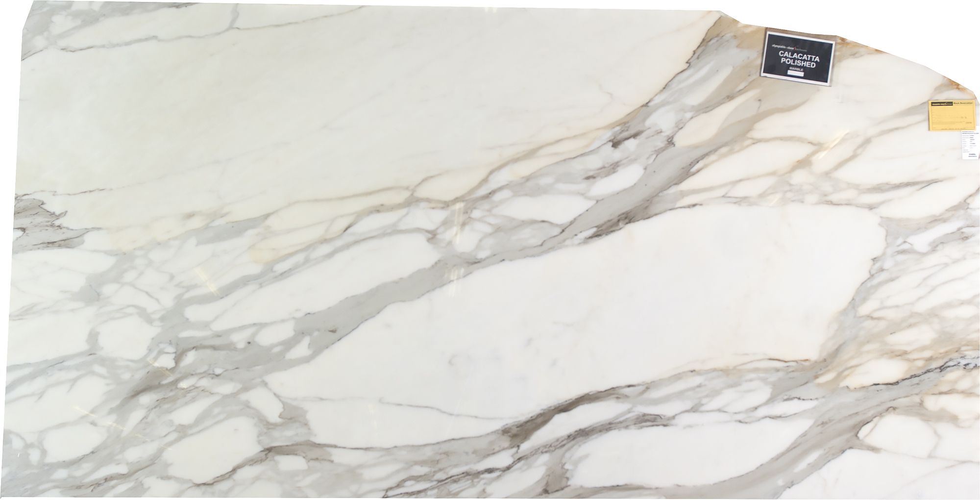 Calacatta Polished