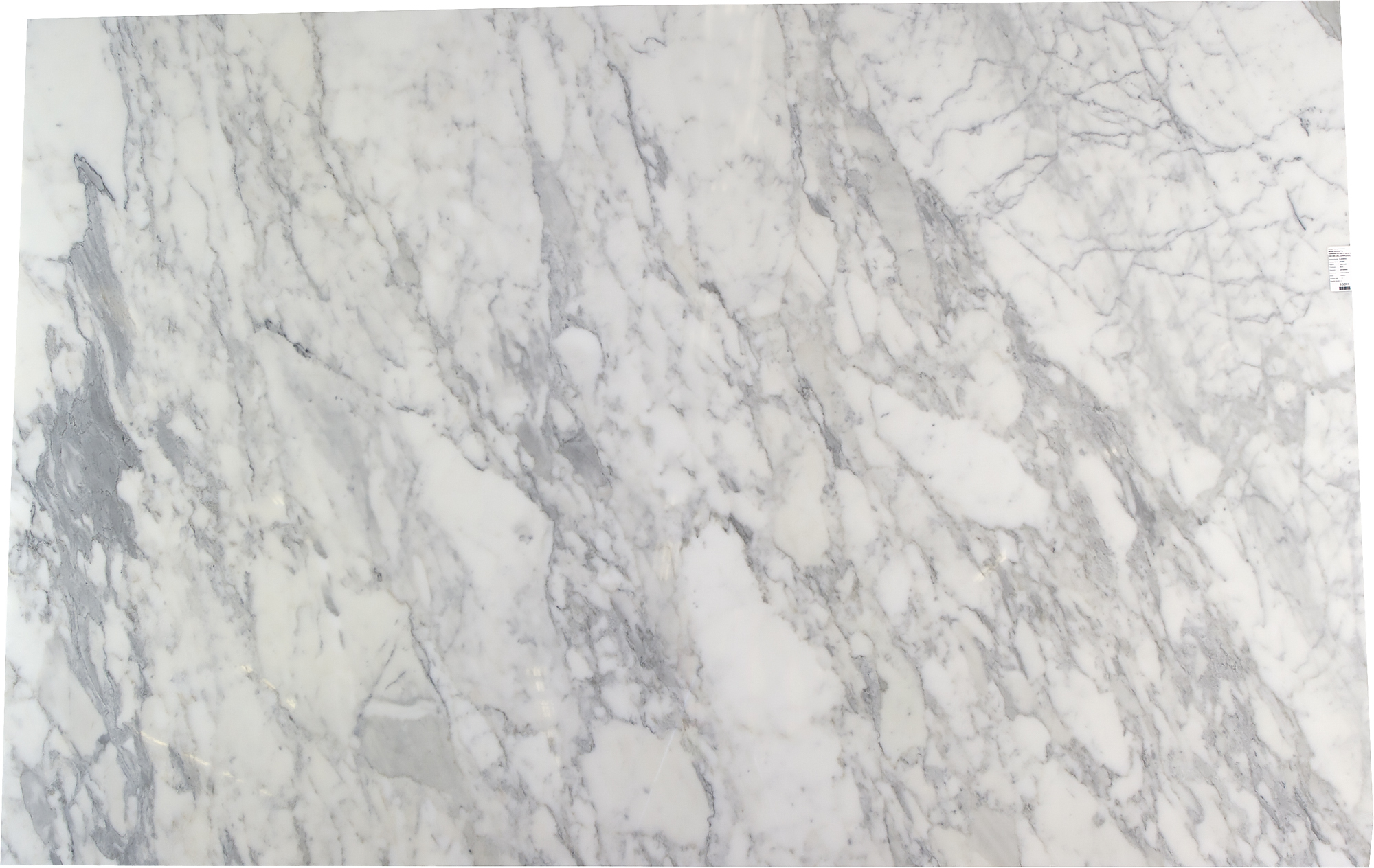 Calacatta Carrara Polished