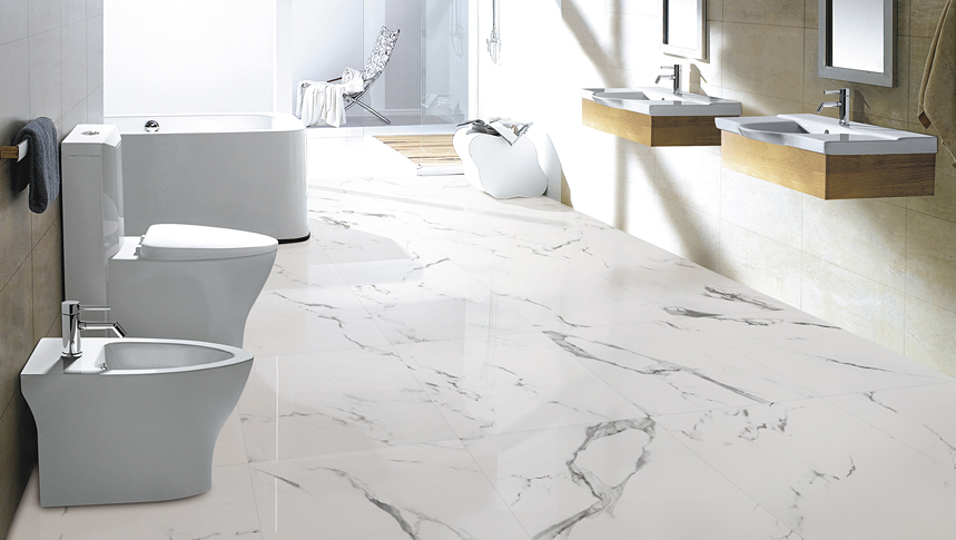 Carrara X Series Porcelain Olympia Tile